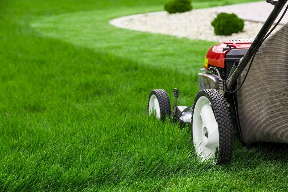 Lawn Mowing Services in El Dorado