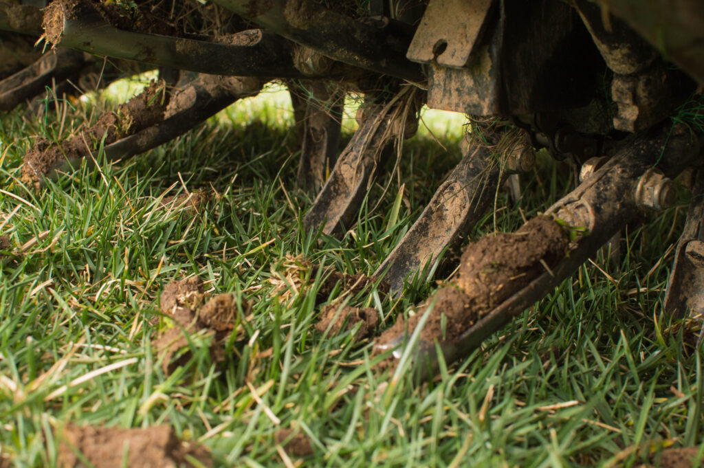What You Didn't Know About Aeration