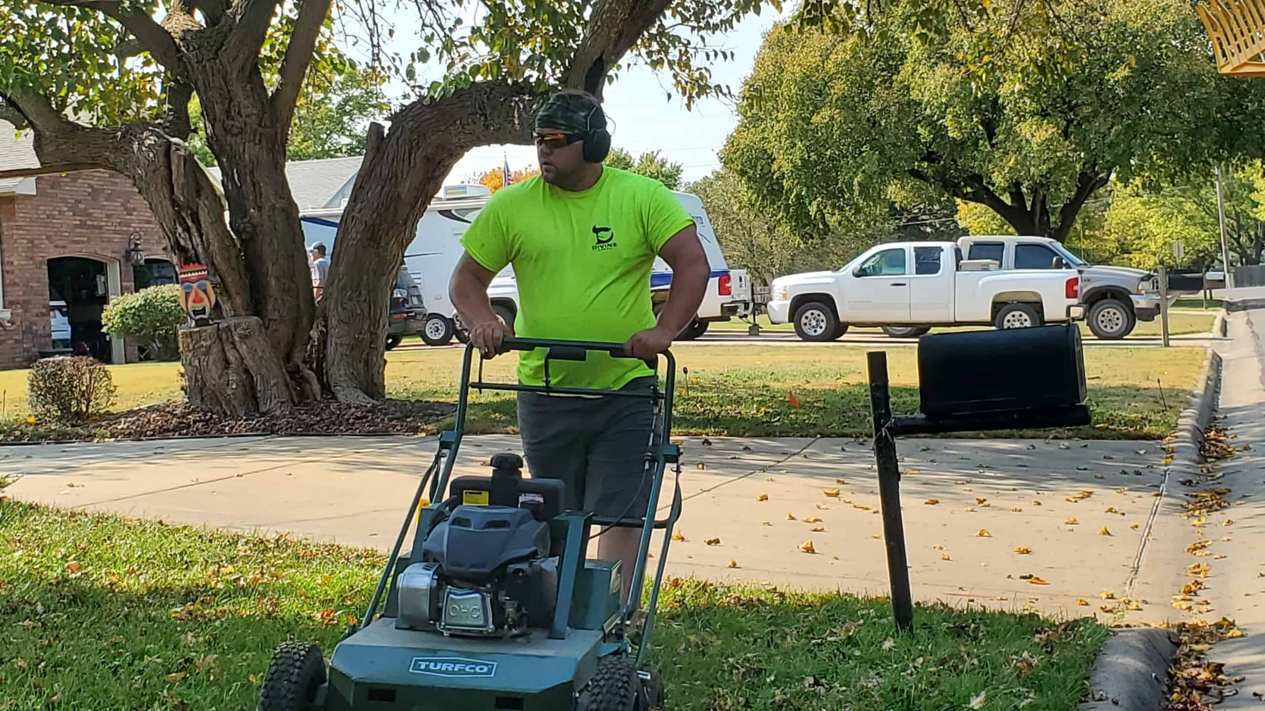 prime your lawn for growth