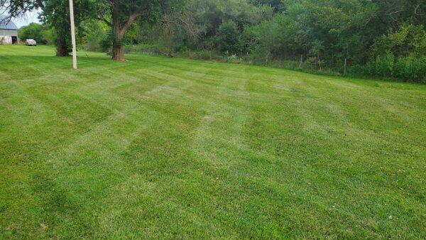 We can handle all your lawn maintenance needs in El Dorado, KS.