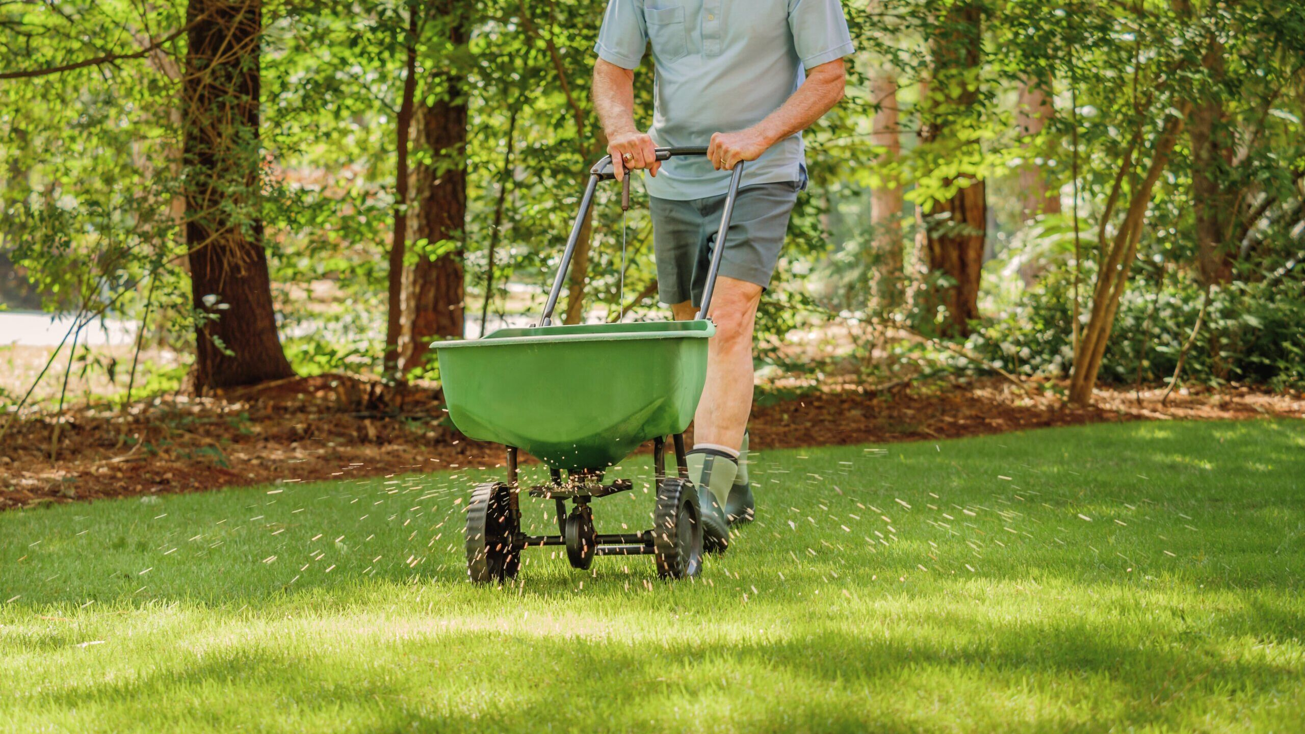 What Makes Lawn Fertilizer Important?